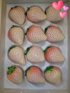 初恋の香り(*^o^*)