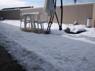 3月の雪(-.-)